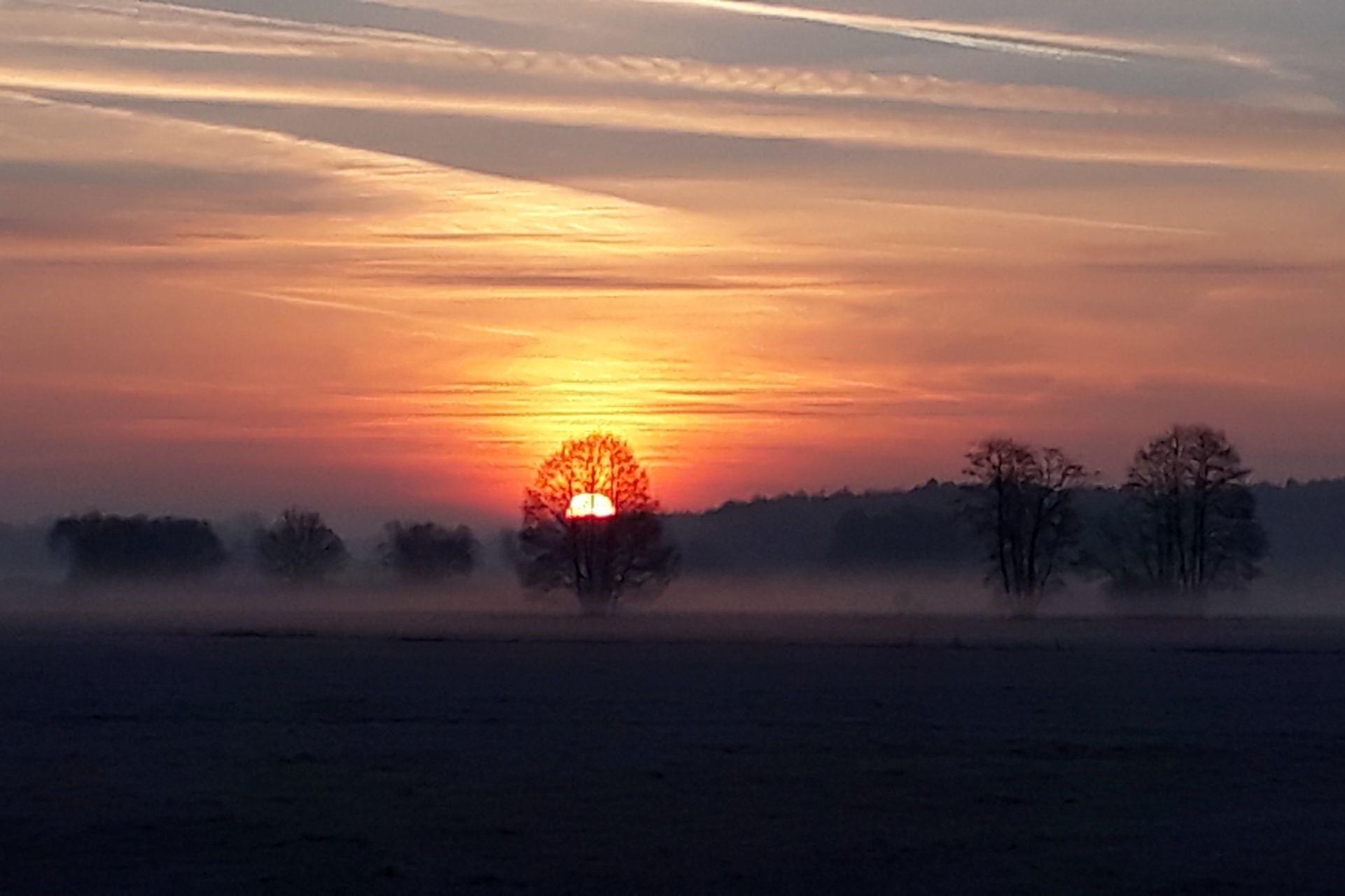 Sonnenaufgang im Labertal bei Langquaid