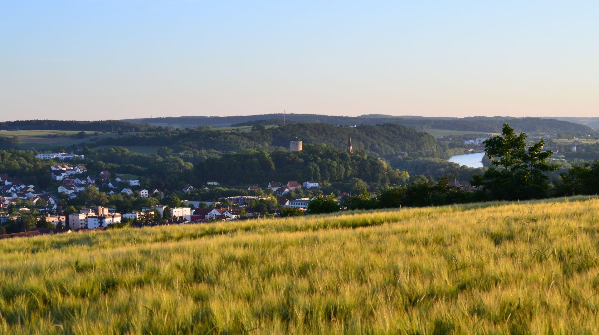 Blick auf Bad Abbach