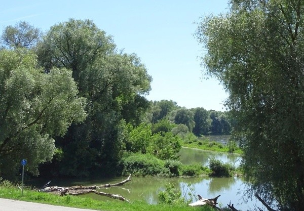 Bad Abbacher Donau-Runde