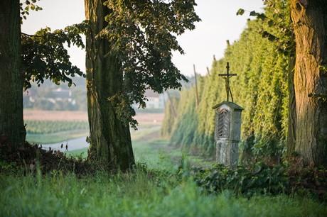Kreuz am Wegesrand bei Niederulrain