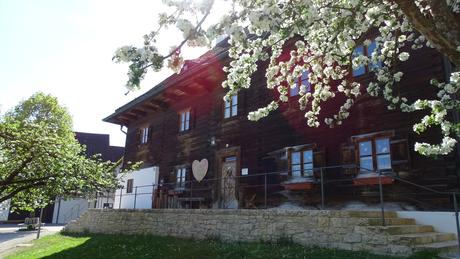 Historischer Pfarrstadel Kirchdorf
