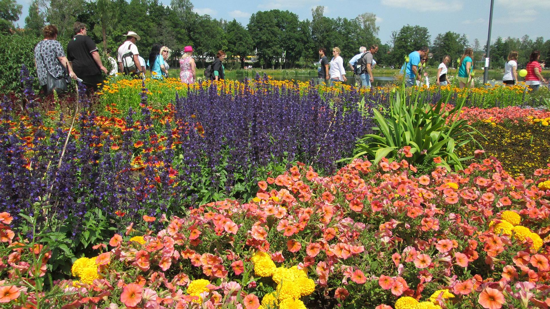 Blühender Sommertraum auf der Landesgartenschau in Ingolstadt